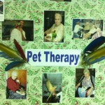 pet therapy 083