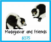 Madagascar and Friends