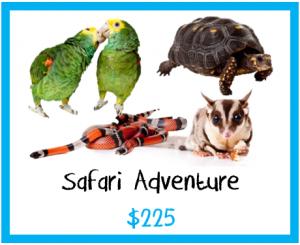 Safari Adventure 2
